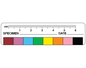Metric Measure Labels